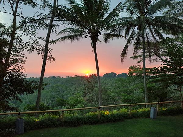 スタッフが見て体験!おすすめバリ島旅行情報&予約サイト